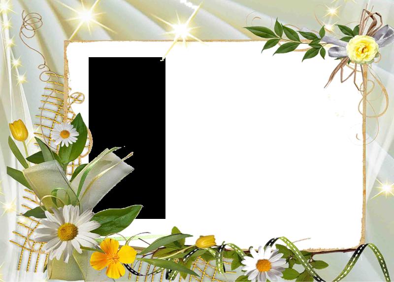 Рамки летние для открытки с днем рождения