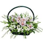 Букет из орхидей в корзине от HY-HY