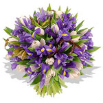 Букет из тюльпанов и ирисов от Marinajazz
