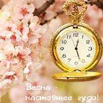 Весенняя от Olya_radost