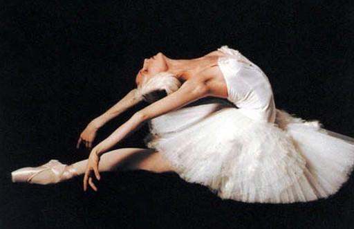 Звезды балета выступят в Киеве - http://m.focus.ua