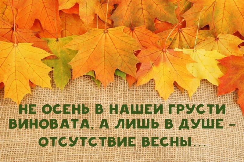 Картинка с надписью осень не повод для грусти