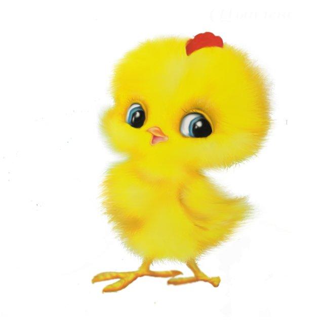 скачать цыпленок пи через торрент - фото 4